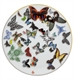 Picture of Butterfly Parade - Dessert Plate