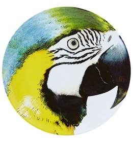 Olhar o Brasil - Charger Plate Yellow Bellied Macaw