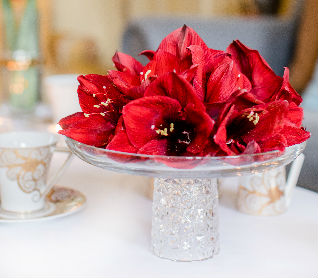 Gift Suggestions - Center Pieces